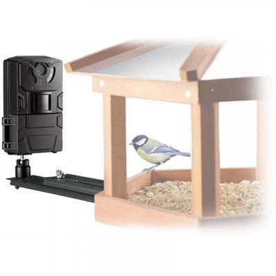 FullHD kamera Bird/Small Animal SFC-1 Foto 16Mpx / video